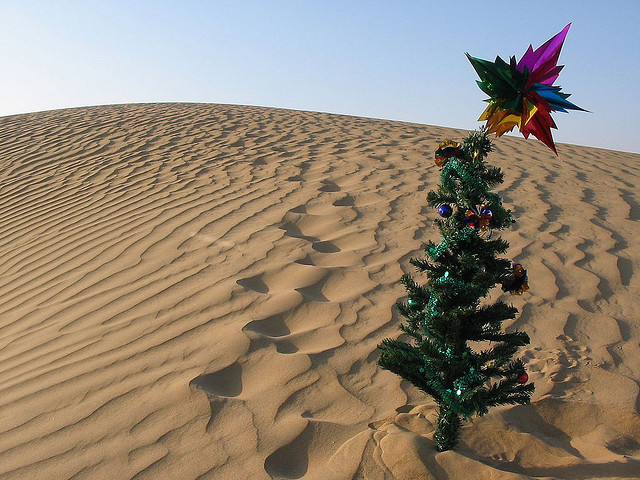 Christmas Tree In The Desert.Desert Christmas A Perfect Touch Skin Care